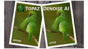 Buy Topaz DeNoise AI 1.2.1 for macOS download for macOS